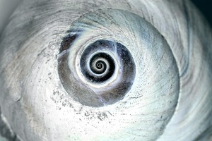 Spirals: Seek Straightness From the Circle